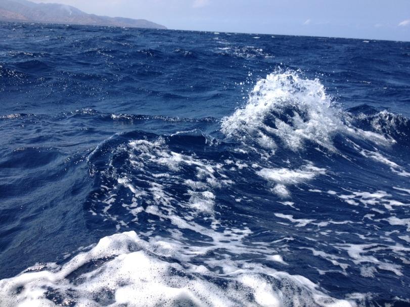 perjanan menyeberang menuju Lombok sempat beberapa kali disambut ombak besar, jadi kayak naik roller coaster :D