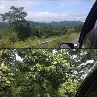 Pemandangan menuju Depapre