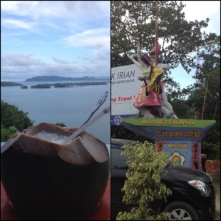 menikmati kelapa muda